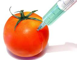 What does GMO mean? - You Be Fit