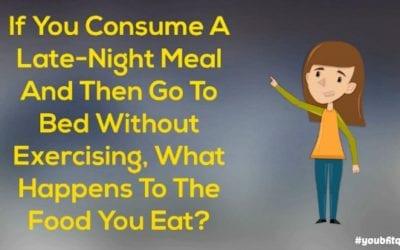 Late-Night Meal Without Exercising, What Happens To The Food You Eat? #youbfitquiz