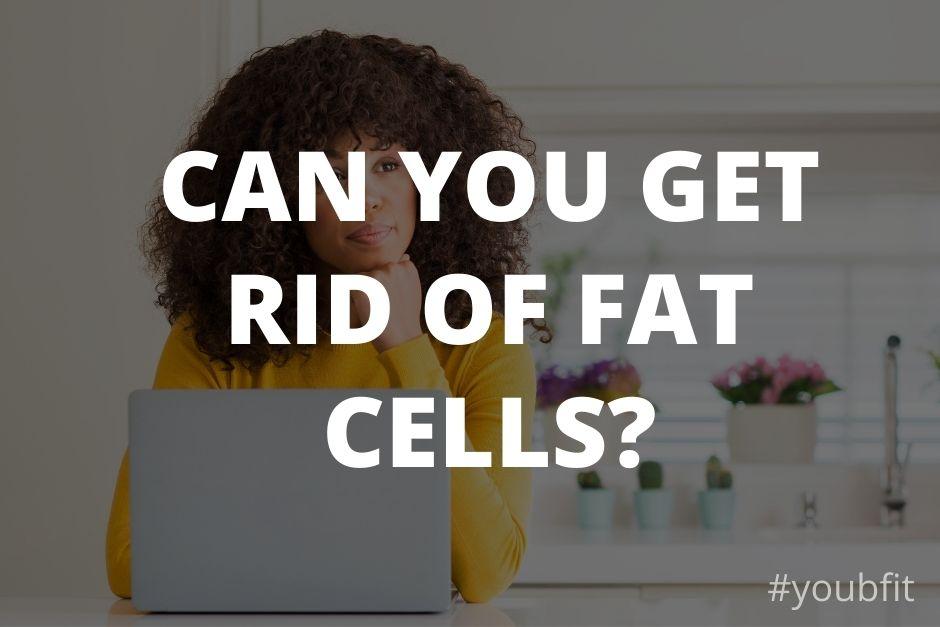 Do Fat Cells Ever Go Away?